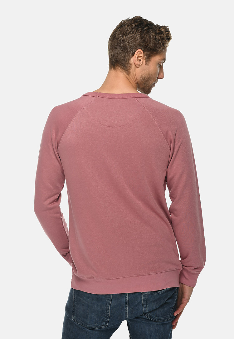 French Terry Raglan Crewneck MAUVE back