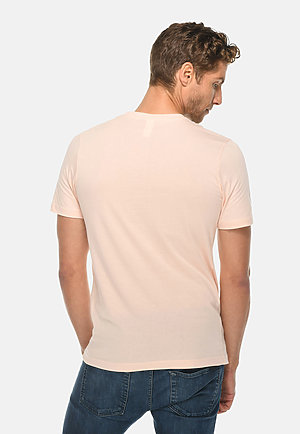 Deluxe Tee PALE PINK back