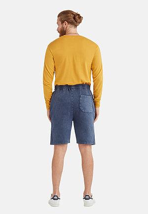 Vintage Shorts VINTAGE DENIM back
