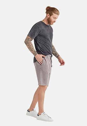 Vintage Shorts VINTAGE ZINC back